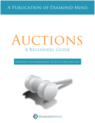 auction_beginner_guide